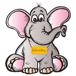 Elephant IF